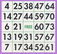 loto bingo 75 boules